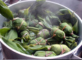 今年は23日(土)手作り笹団子の「出来たてほやほやカフェ」で旬の香りをお楽しみください